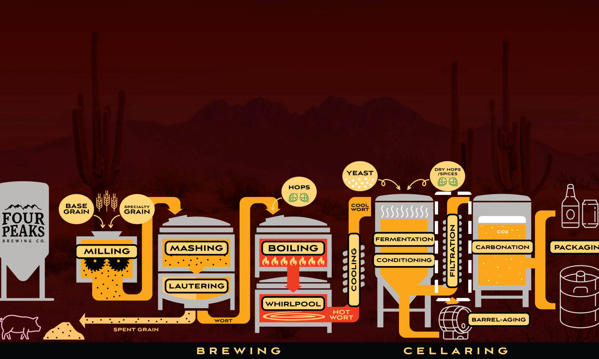 Brewing Process – Filtration